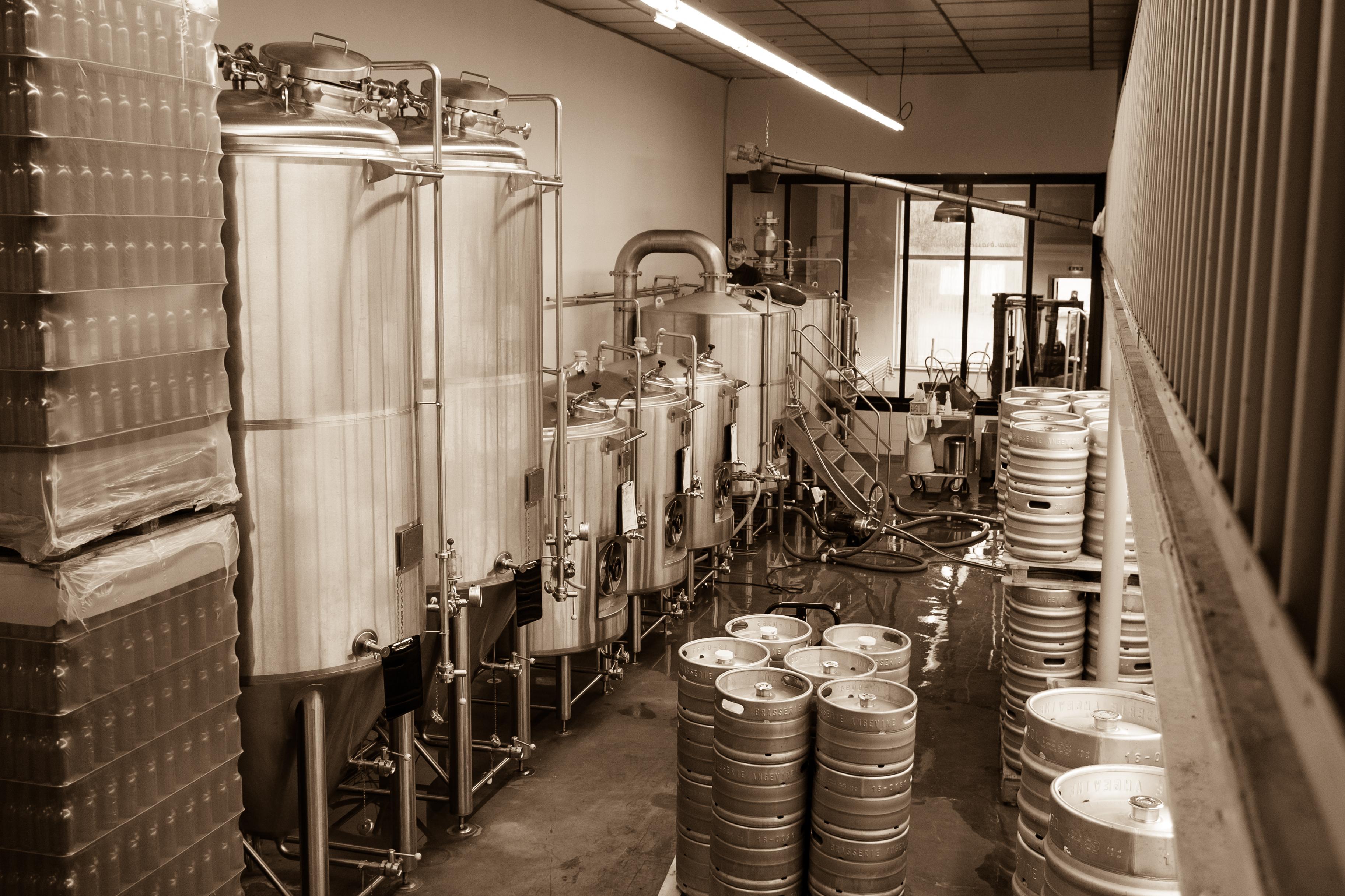 Brasserie Angevine Fermenteur Fut inox salle de brassage